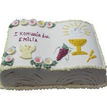 Tort 27